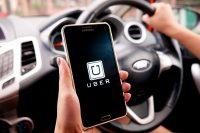 Kierowca z aplikacją ubera na telefonie
