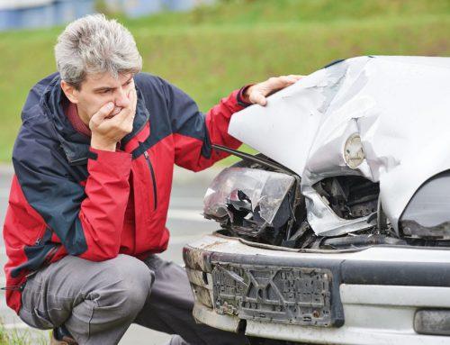 Potrąciłeś psa i uszkodziłeś samochód? Możesz otrzymać odszkodowanie!